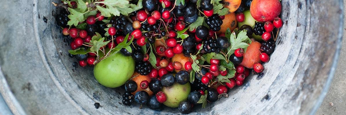 fruit bucket.jpg