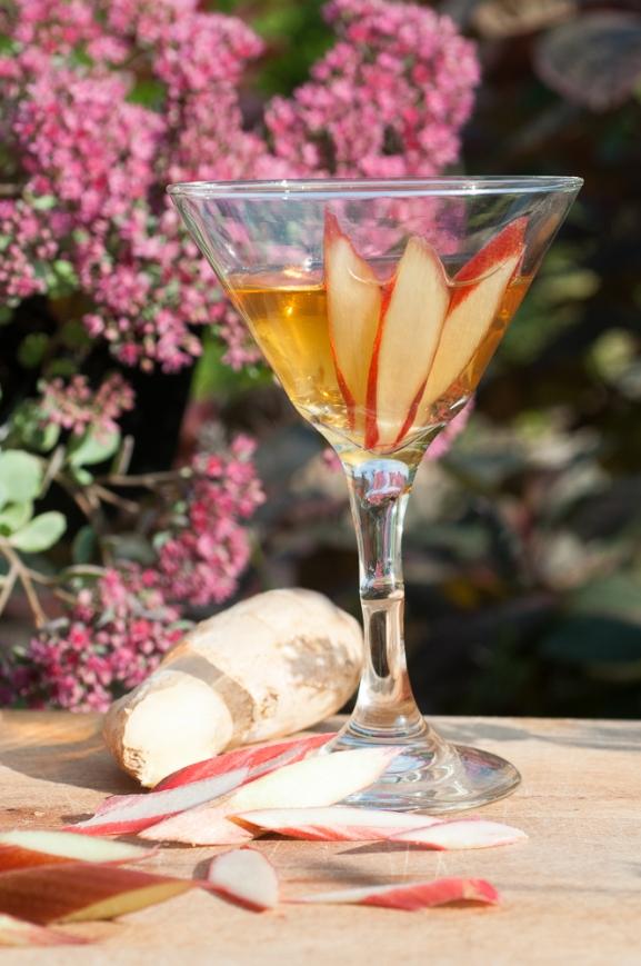 Rhubarb Vodkatini!