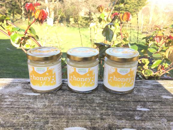 Set Honey Image